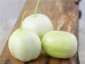 Round Apple Cucumber